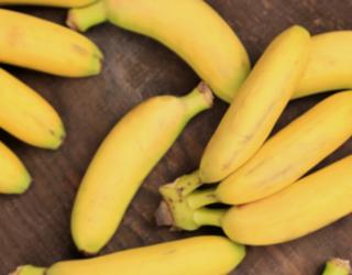 Why you should go Bananas for Bananas!